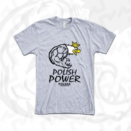 POLISH POWER